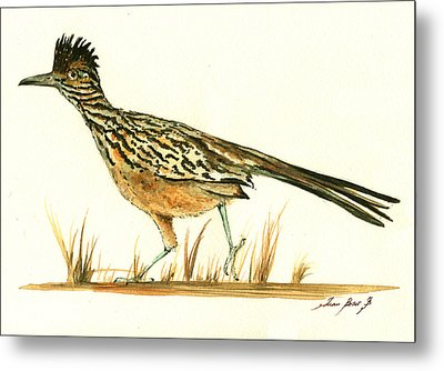 Roadrunner Bird Metal Print by Juan Bosco