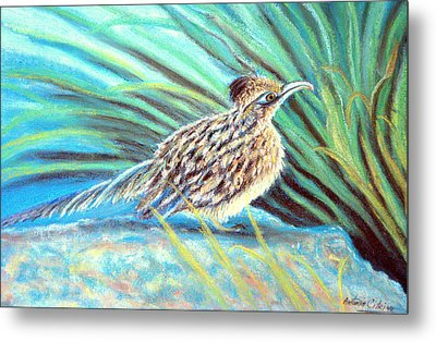 Roadrunner Fluffing Sold   Pastel Metal Print by Antonia Citrino