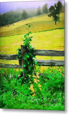 Roadside Beauty Metal Print by Darren Fisher