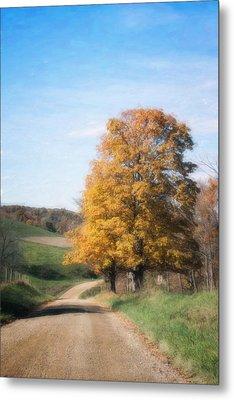 Roadside Tree In Autumn Metal Print
