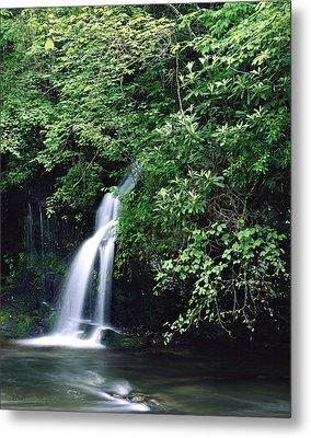 Roadside Waterfall Smoky Mountains Metal Print by Tony Ramos