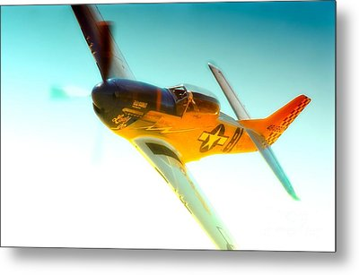 Robert Patterson And Tf-51d Mustang Lady Jo 2010 Reno Air Races Metal Print