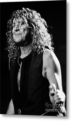 Robert Plant-0039 Metal Print by Timothy Bischoff