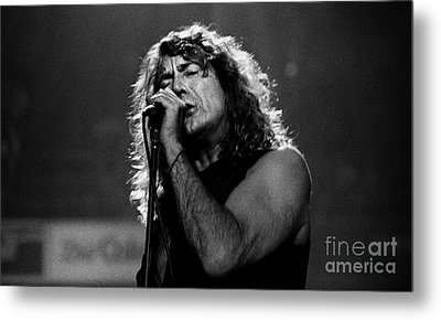 Robert Plant-0041 Metal Print by Timothy Bischoff