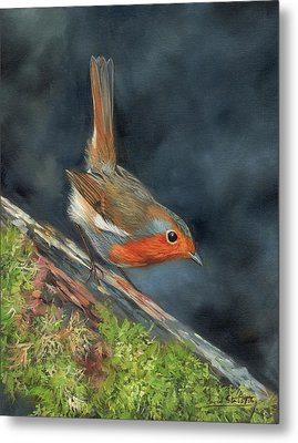Metal Print featuring the painting Robin by David Stribbling