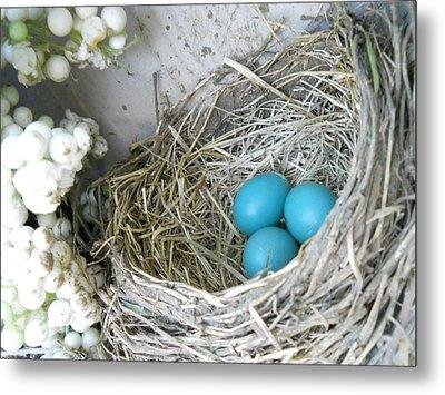 Robin Eggs In A Wreath Metal Print by Marqueta Graham