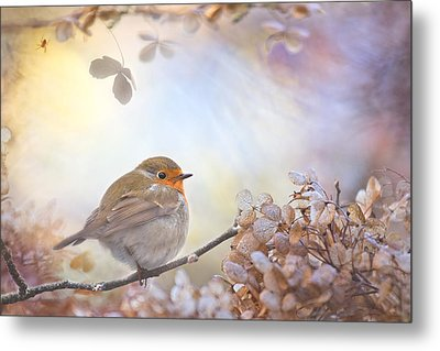 Robin On Dreams Metal Print by Teuni