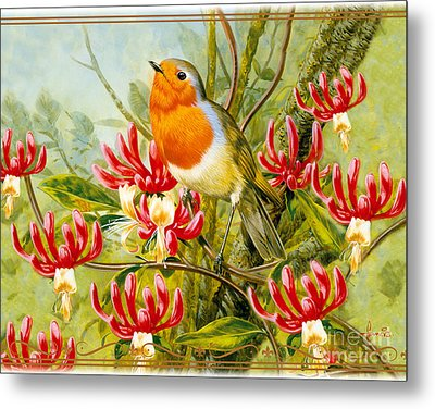 Robin Summer Metal Print by John Francis