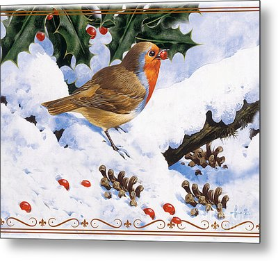 Robin Winter Metal Print by John Francis