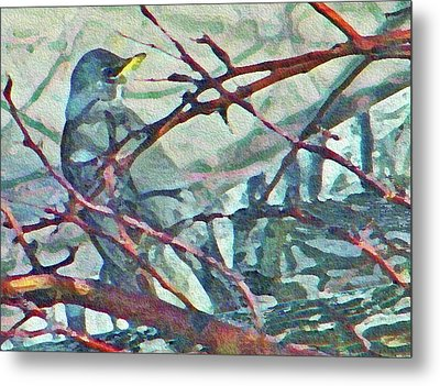 Robins Impression Of Spring Metal Print