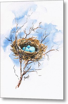 Robin's Nest Metal Print by Sam Sidders