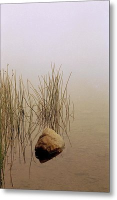 Rock And Reeds On Foggy Morning Metal Print