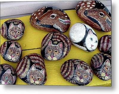 Rock Cats And Fawns Metal Print by Barbara Griffin
