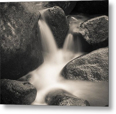 Metal Print featuring the photograph Rock Star by Tom Vaughan