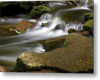 Rock Water And Moss Metal Print by Timothy McIntyre