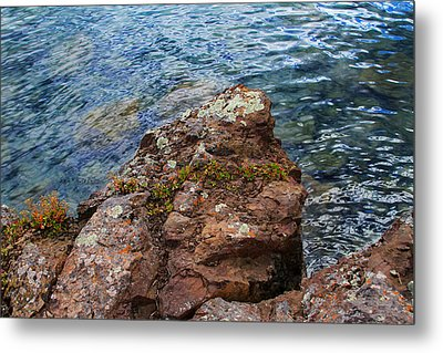 Rock With Face And Lichen Metal Print by Bonnie Follett