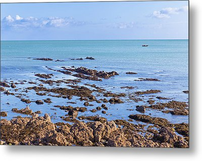 Metal Print featuring the photograph Rocks And Seaweed And Seagulls In The Irish Sea At Howth by Semmick Photo