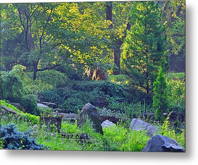 Rocky Morning Metal Print by Peter  McIntosh
