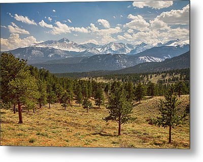 Metal Print featuring the photograph Rocky Mountain Afternoon High by James BO Insogna