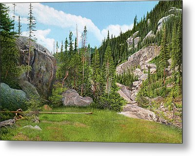 Rocky Mountain Forest Metal Print