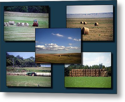 Rocky Mountain Hay Rolls Collage 02 Metal Print by Thomas Woolworth