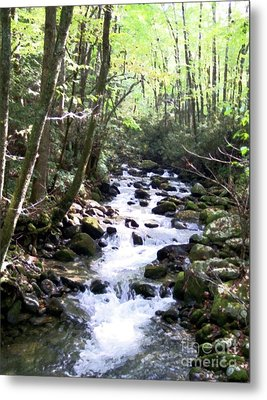 Metal Print featuring the mixed media Rocky Stream 6 by Desiree Paquette