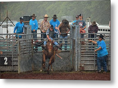 Metal Print featuring the photograph Rodeo Bronco by Lori Seaman