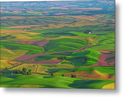 Rolling Green Hills Of The Palouse Metal Print by James Hammond