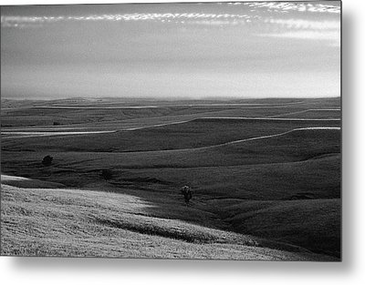 Metal Print featuring the photograph Rolling Hills by Thomas Bomstad