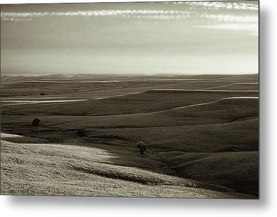 Metal Print featuring the photograph Rolling Hills Toned by Thomas Bomstad
