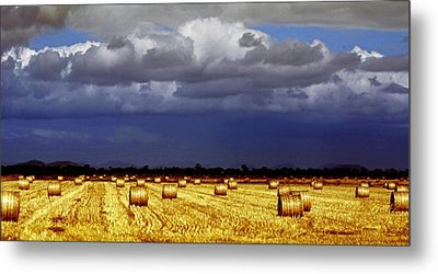 Rolling On Metal Print by Holly Kempe