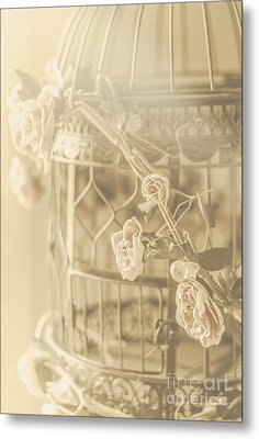 Romance In A Captive Entanglement Metal Print by Jorgo Photography - Wall Art Gallery