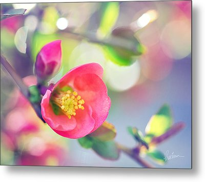 Romancing Spring I Metal Print by Kharisma Sommers