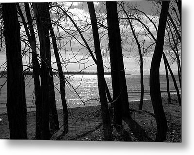 Metal Print featuring the photograph Romantic Lake by Valentino Visentini