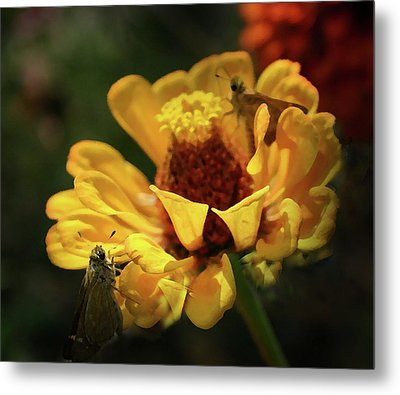 Metal Print featuring the digital art Room For More by Kim Henderson