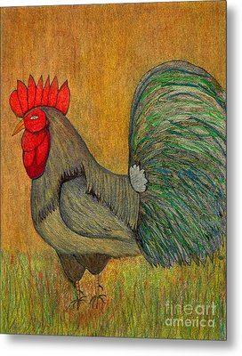 Rooster Feathers Metal Print