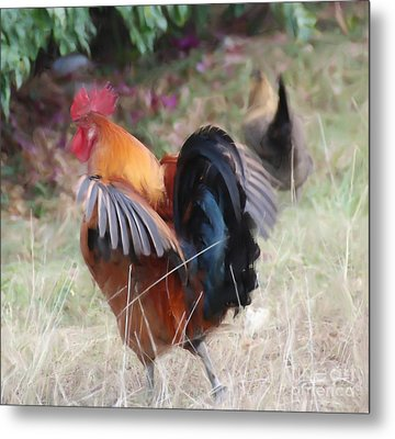 Metal Print featuring the painting Rooster by Jan Daniels