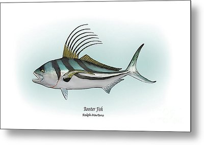 Roosterfish Metal Print by Ralph Martens