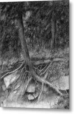 Roots II Metal Print by David King