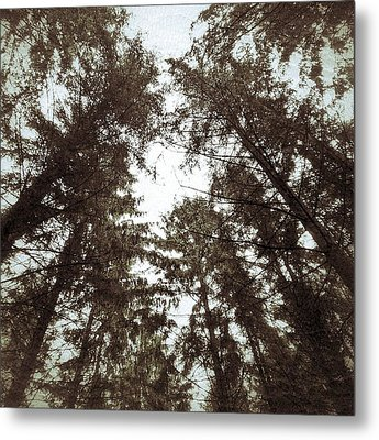 Metal Print featuring the photograph Rorschach Trees by Karen Stahlros