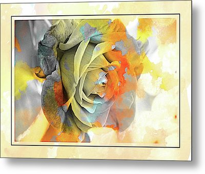 Metal Print featuring the photograph Rose Bud by Athala Carole Bruckner