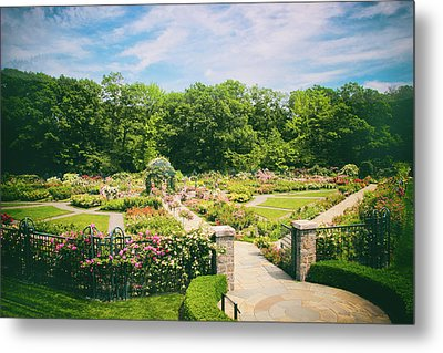 Rose Garden Views Metal Print by Jessica Jenney