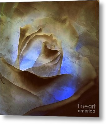 Metal Print featuring the photograph Rose - Night Visions  by Janine Riley
