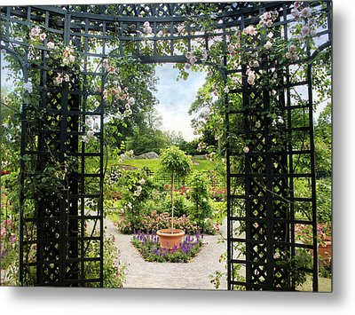Rose Pergola Views Metal Print by Jessica Jenney
