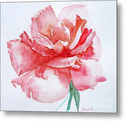 Rose Pink Metal Print by Jasna Dragun