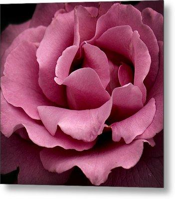 Rose Violet Waves Metal Print