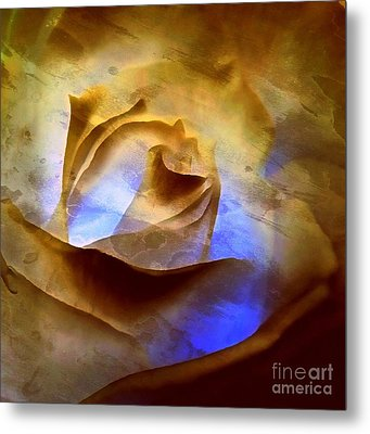 Metal Print featuring the photograph Rosebud - Till We Meet Again by Janine Riley