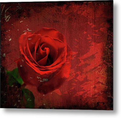 Metal Print featuring the photograph Roses Are Still Red by Bonnie Willis