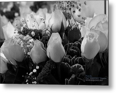 Metal Print featuring the photograph Roses For You by Paul SEQUENCE Ferguson             sequence dot net