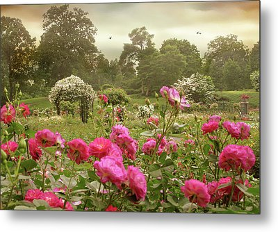 Roses In The Mist Metal Print by Jessica Jenney